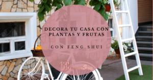 Decorar tu casa con plantas y frutas con feng shui