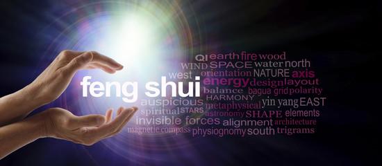 www.naturashuii.com